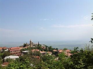 панорама зеленого грузинского города Сигнахи