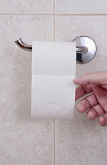 Toilet paper with hand