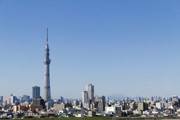 Tokyo skytree,Mt.Fuji and city