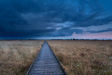 wooden path on marsh at storm during sunset