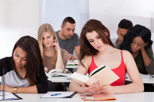 Beautiful college student reading book