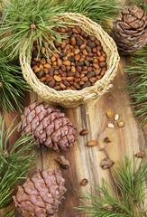 Pine nuts and cones