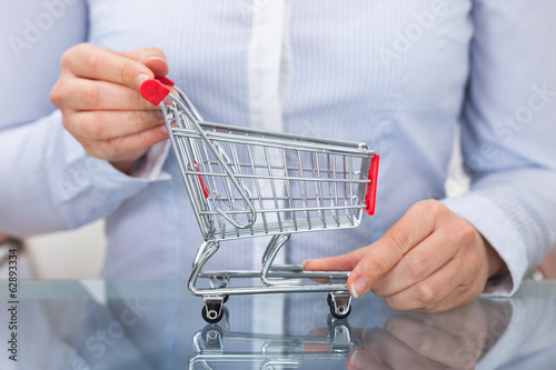 Businessperson  Holding Shopping Cart