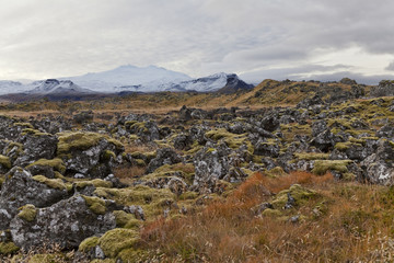 View of a volcanic field with Snæfellsjökul volcano at the bac