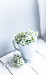 Daisies in white vase on wooden background