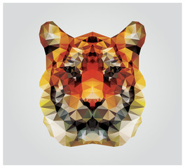 Geometric polygon tiger head, triangle pattern design
