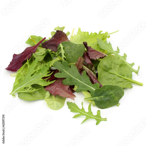 Fotobehang Salade Salade mesclun - Mesclun salad