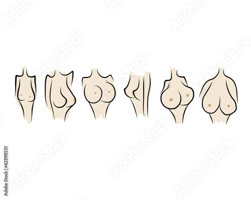 Female breast sketch for your design