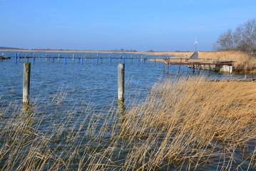 Boddenlandschaft am Hafen Wustrow