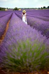 Beautiful girl in white dress walking in lavender field, Provenc