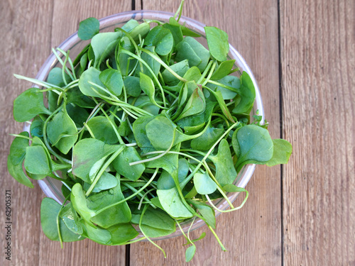 Watercress in bowl on wooden background