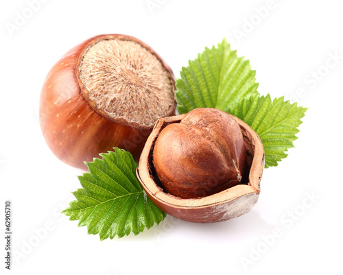Hazelnuts with leaves - 62905710