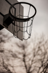 old basketball rim in front of tree