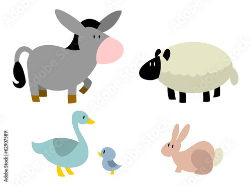 Barnyard Animals: Donkey, Sheep, Duck, Rabbit