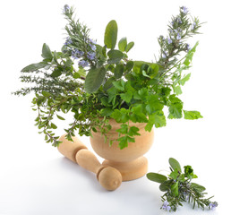 erbe aromatiche mortaio fondo bianco