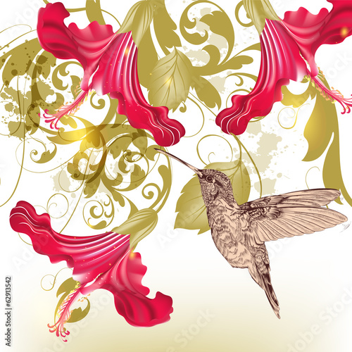 Floral  vector background  with humming bird and  flowers