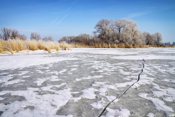 Winter landscape with trees, reeds and frozen river
