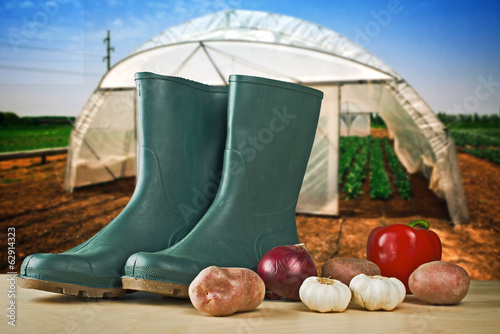 Rubber boots and various vegetable with greenhouse in background