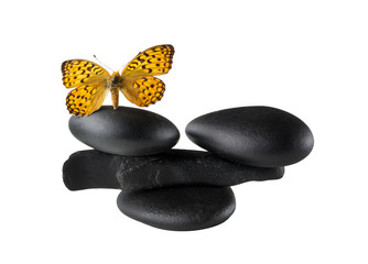 Zen stones balance concept with butterfly