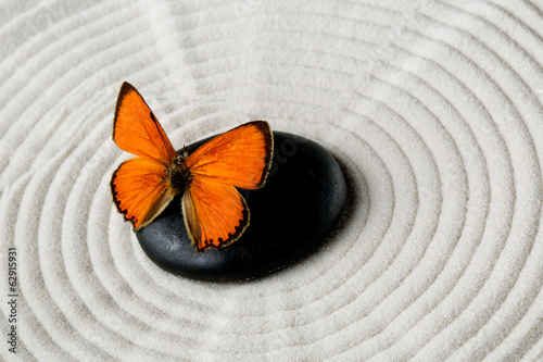 canvas print picture Zen stone with butterfly