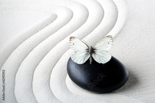Plexiglas Zen Zen stone with butterfly