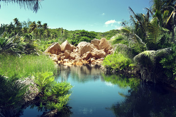 lake in jungle of Seychelles, La Digue island