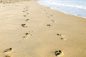 Footstep and wave on the beach