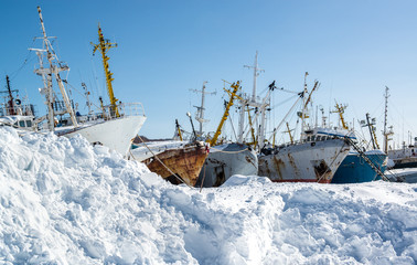Ship graveyard. Petropavlovsk-Kamchatsky, Kamchatka, Russia