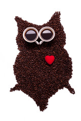 owl, made of coffee seeds and two caps,isolated on white backgr
