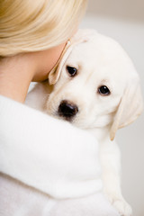 Back view of woman in white sweater embracing puppy of labrador