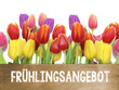 Obrazy na płótnie, fototapety, zdjęcia, fotoobrazy drukowane : Frühlingsangebot