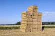field in harvest with bale of straw