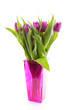 Pink Dutch tulips in vase
