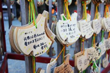 Ema prayer tables at Toshogu Shrine.