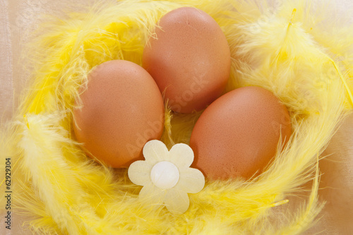 Chicken egg decorated for easter in yellow feathers