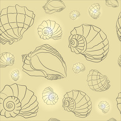 vector seashell background
