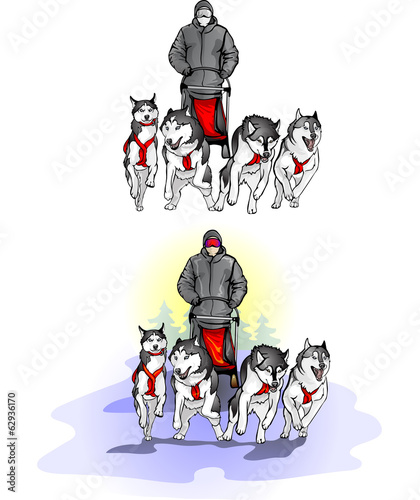 team of four sports sled dogs with dog-driver