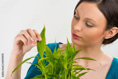 Woman holding lucky bamboo plant and taking care of it