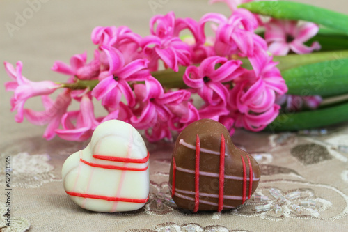 Two chocolates and pink hyacinth