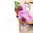 Spa setting with orchid flowers,with space for text