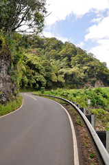 Road to Hana, Maui (USA)