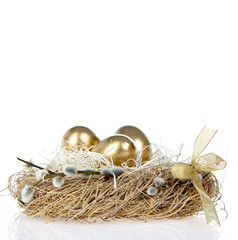 Golden Egg in the Nest