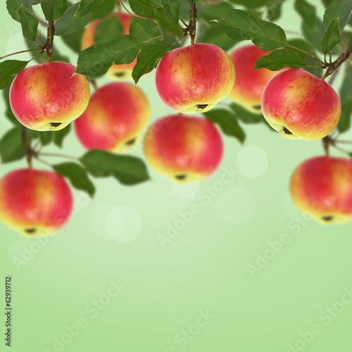 Fresh apples on green background