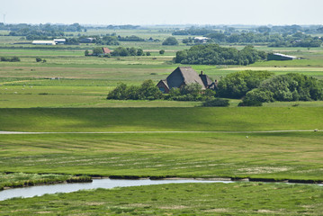 Landschaft am Deich, Westerhever, Schleswig-Holstein