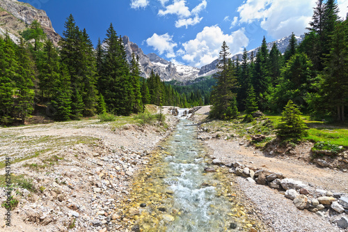 Dolomiti - small stream in Contrin Valley