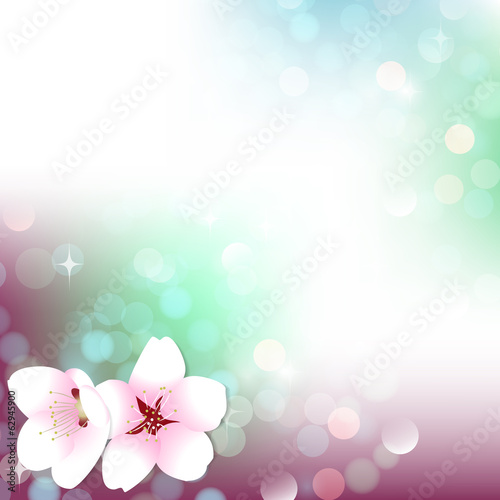 Spring bokeh cherry blossom background