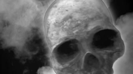 Skull noir scary horror