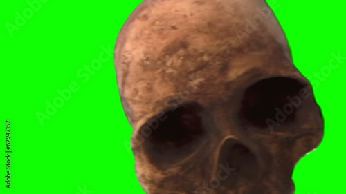 Skull scary Halloween horror green screen chroma key