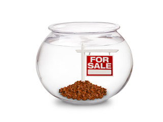 Fish Bowl - For Sale