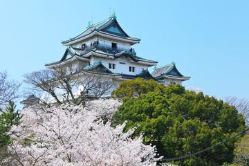 Japanese castle in wakayama
